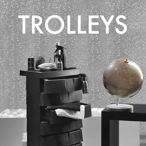 6.TROLLEYS